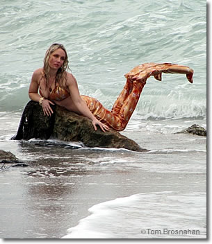 Mermaid on Caspersen Beach, Venice, Florida