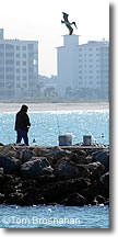 Fishing at South Jetty, Venice Florida